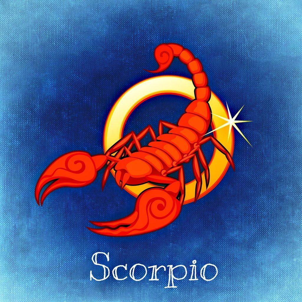 scorpion-pierre-mineraux